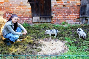 Anna und die Schweine